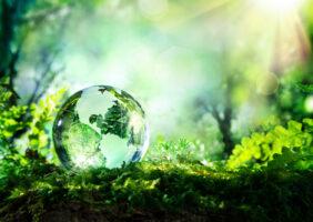 Licenciamento Ambiental para Publicação no Diário Oficial
